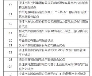 宁波水表入选浙江省现代服务业与先进制造业深度融合试点项目